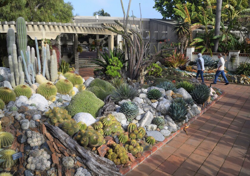 The cactus garden at Sherman Library & Gardens in Corona Del Mar