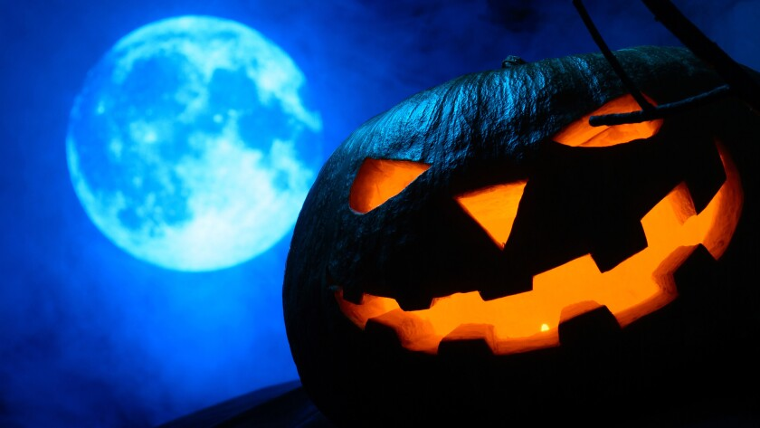 Whether spooky or sweet, haunting or hilarious, there are events in La Jolla and across San Diego that celebrate the spirited season for children of all ages.