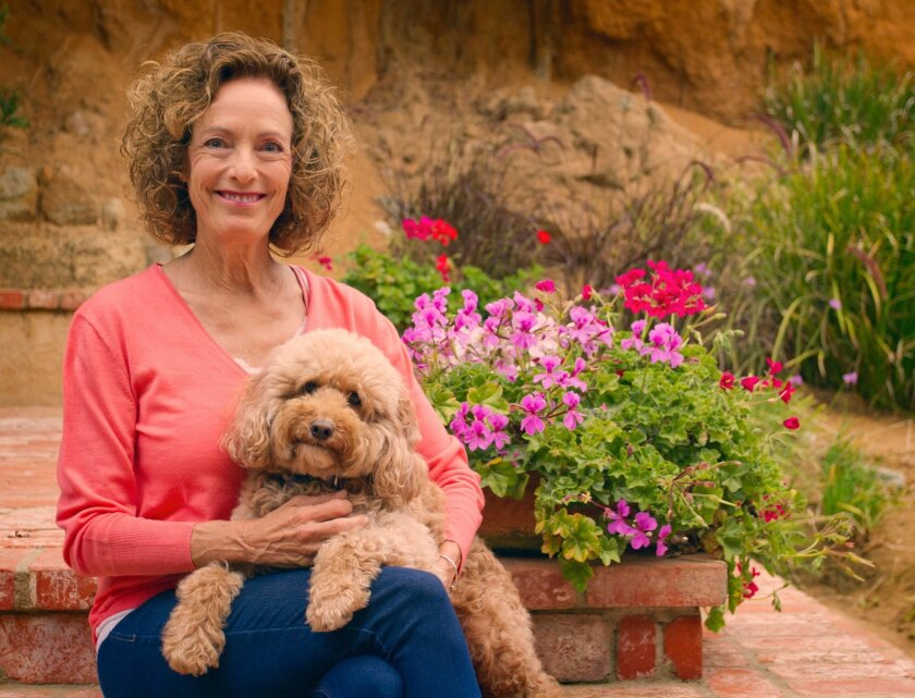 """Linda Katz with her dog, Charli: """"We've accomplished a lot as a women's movement, but our work is not done."""""""