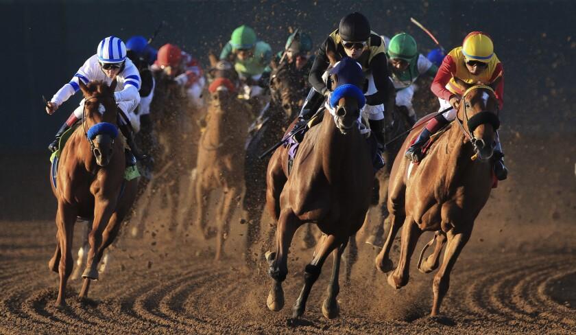 Fall horse racing