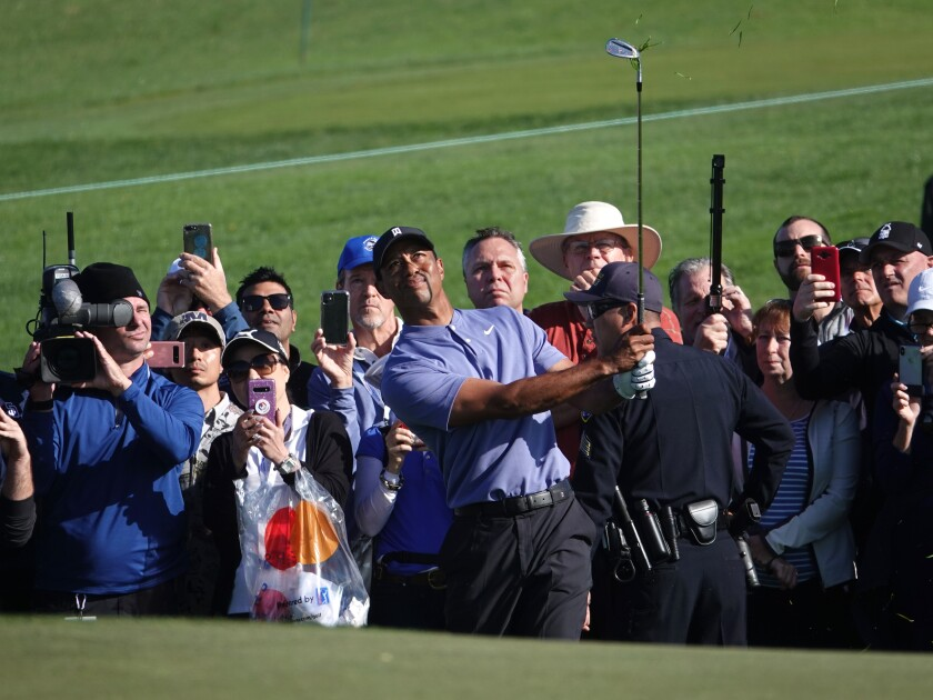 Tiger Woods chips from the rough at Torrey Pines during the first round of the Farmers Insurance Open in January.