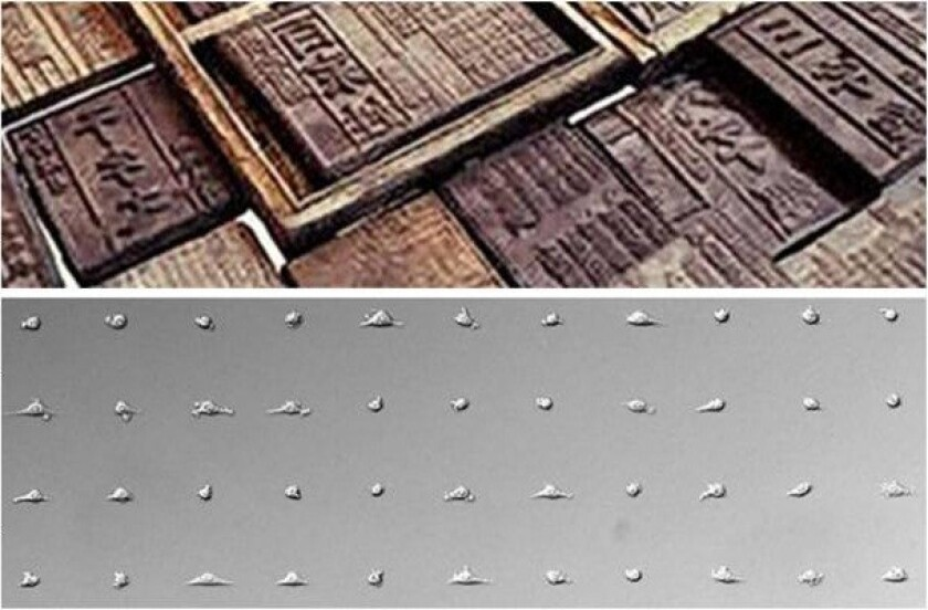 Chinese woodblock inspires cell printing
