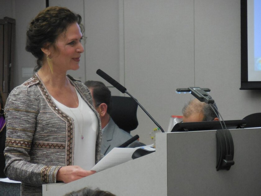 Outgoing Mayor Lesa Heebner highlights the city's accomplishments in 2015.