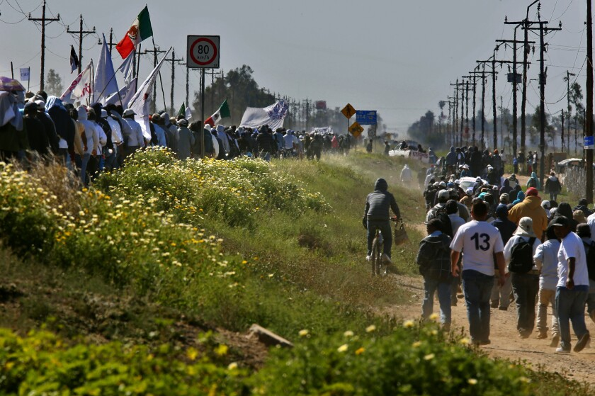 Farmworkers march Thursday along the Baja Peninsular Highway near San Quintin, Mexico, in a peaceful but angry show of force after growers refused to meet their demands to boost wages.