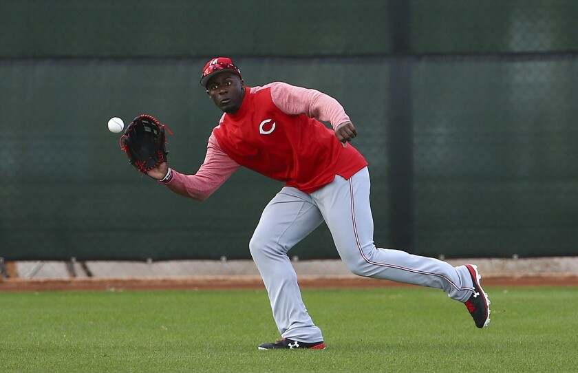 Cincinnati Reds center fielder Taylor Trammell moves over to catch a line drive at the Reds spring training baseball facility Monday, Feb. 18, 2019, in Goodyear, Ariz.