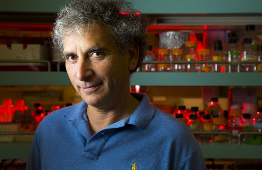 """Ethan Bier, scientist and professor of cell and developmental biology at University of California, San Diego, and his team of researchers are using the approach called """"gene drive"""" to make engineered mosquitoes that no longer can infect people with malari"""