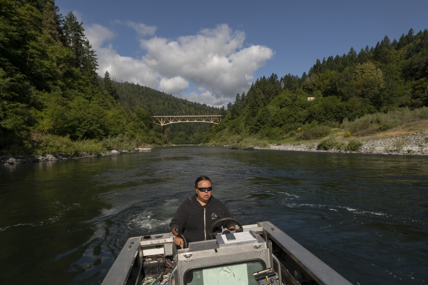 """Jamie Holt, lead fisheries technician for the Yurok Tribe, maneuvers a boat near a fish trap in the lower Klamath River on Tuesday, June 8, 2021, in Weitchpec, Calif. A historic drought and low water levels are threatening the existence of fish species along the 257-mile long river. """"When I first started this job 23 years ago, extinction was never a part of the conversation,"""" she said of the salmon. """"If we have another year like we're seeing now, extinction is what we're talking about."""" (AP Photo/Nathan Howard)"""