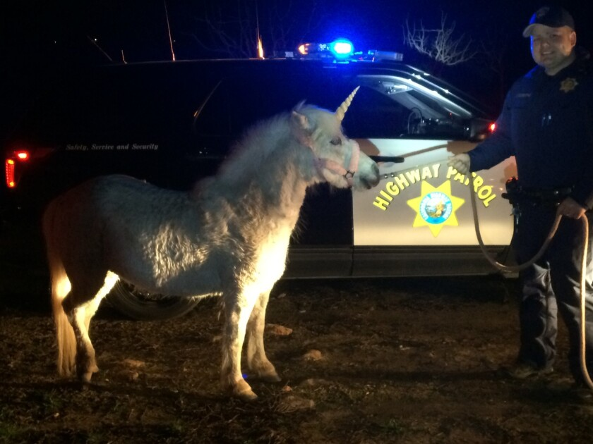 'Unicorn' leads CHP officers on nearly four-hour chase