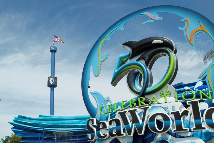 The legislation to ban orca shows comes as SeaWorld is celebrating this year its 50th anniversary.