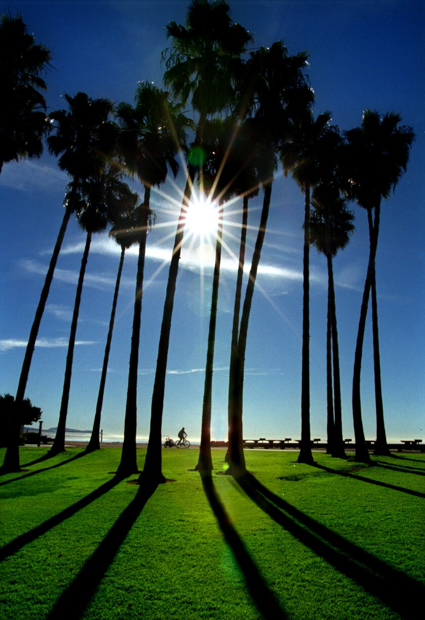 A sunny winter day in San Juan Capistrano