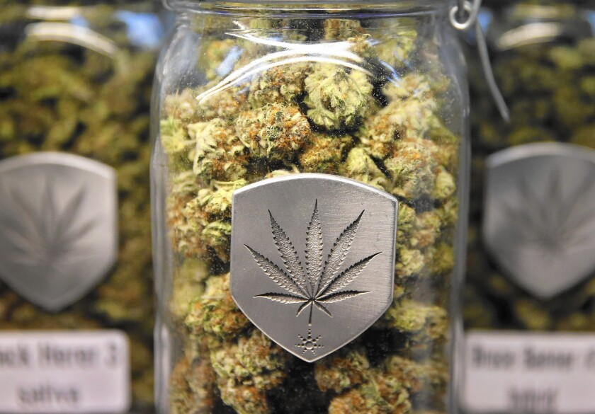 Different strains of pot are displayed for sale at a marijuana dispensary in Denver in 2013.