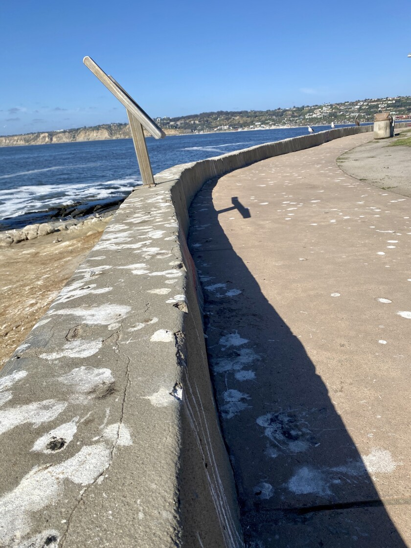 A portion of the La Jolla Cove walkway is covered in bird droppings on May 13.