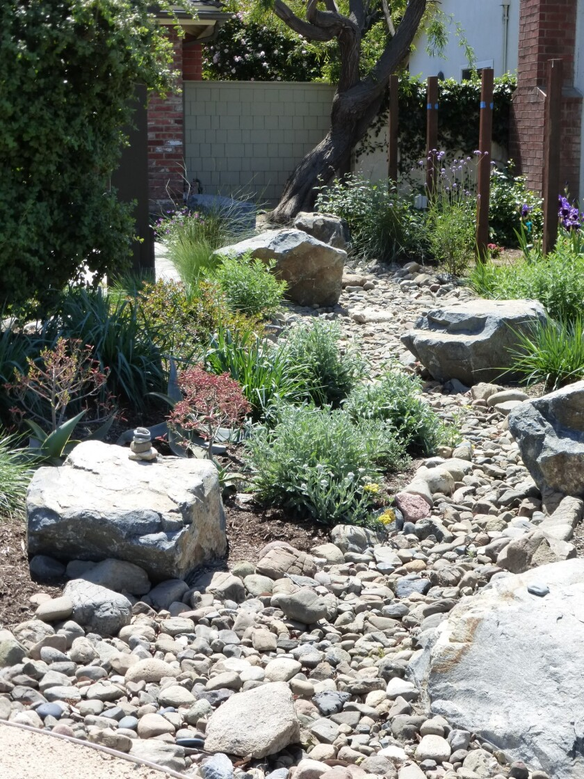 In 2017 Steve Widmayer removed all the hardscape and landscape from his front yard in Tustin and rep