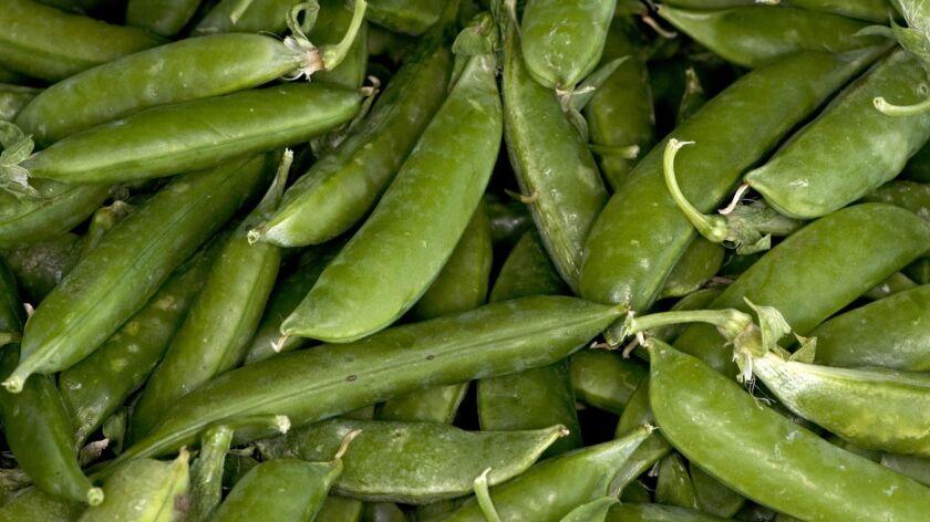 Sugar snap peas grown by J.R. Organics in Escondido, at the Mar Vista farmers market 1/8/12 © David
