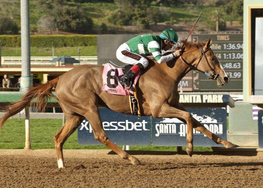 In a photo provided by Benoit Photo, Stellar Wind and jockey Victor Espinoza win the Grade III, $100,000 Santa Ysabel Stakes horse race, Saturday, Feb. 28, 2015, at Santa Anita in Arcadia, Calif. (AP Photo/Benoit Photo)
