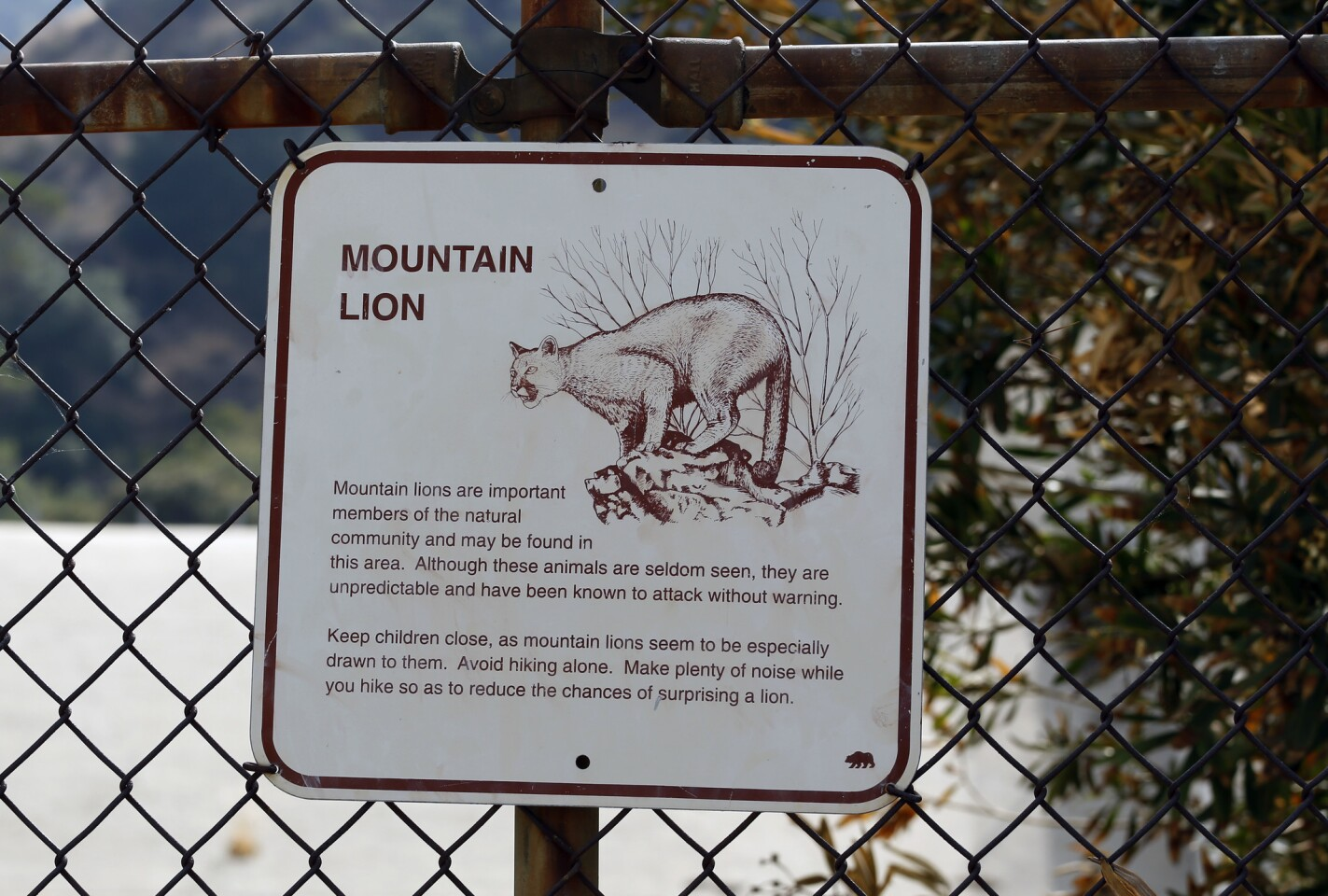 At the entrance to the Beaudry Motorway walk in Glendale you are greeted by a mountain lion warning sign. The Verdugo Mountains separating the communities of Montrose and La Crescenta from Glendale and Burbank rise sharply and present impressive city and valley views.