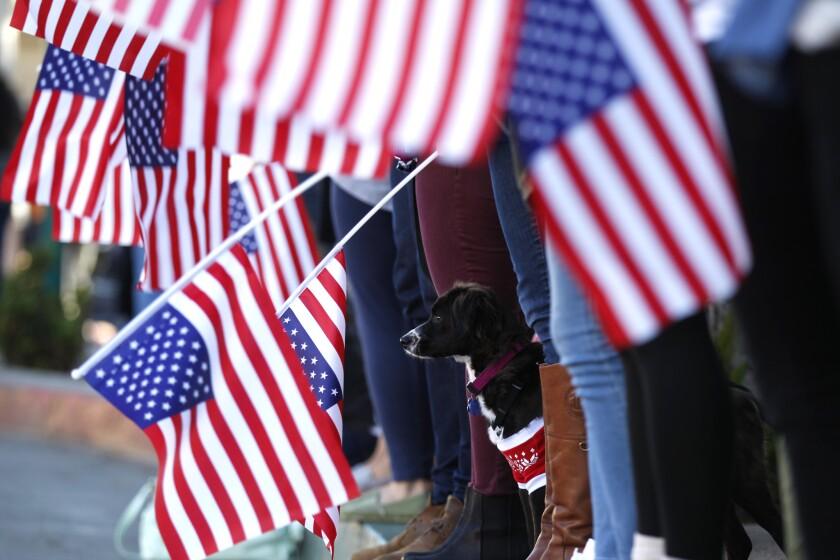 Veterans Day |