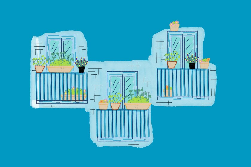 Illustration of herbs growing in pots on three balconies
