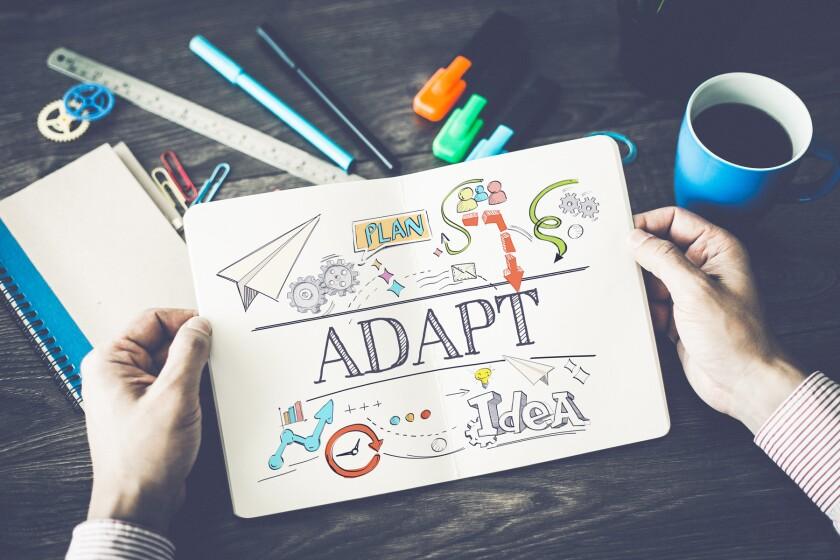 plan, adapt, idea