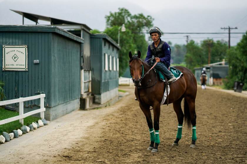 SANTA ANITA, CALIF. - JUNE 20: Rigoberto Cevilla, an exercise rider, on a horse outside of Hector Pa