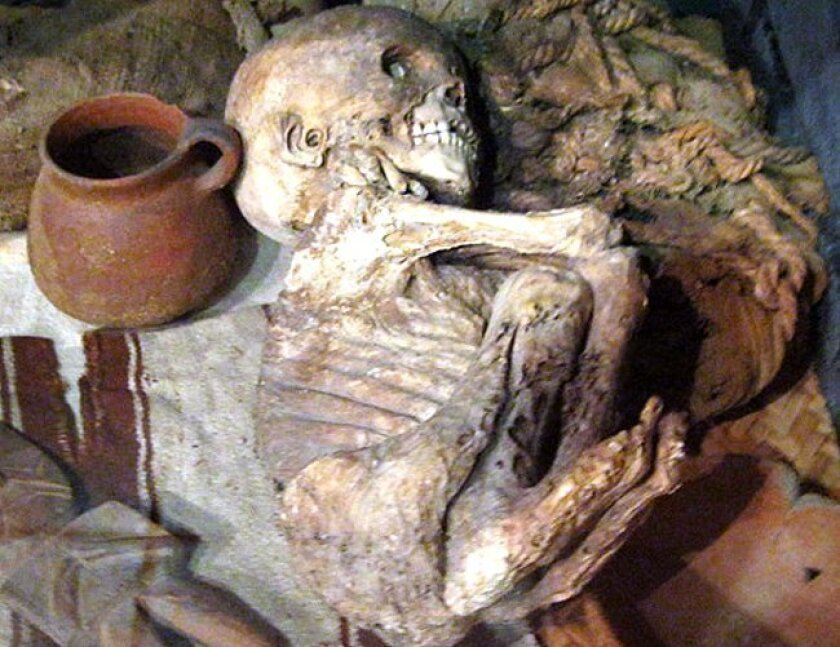 The San Diego Museum of Man houses the naturally mummified remains of four children from about 500 years ago.