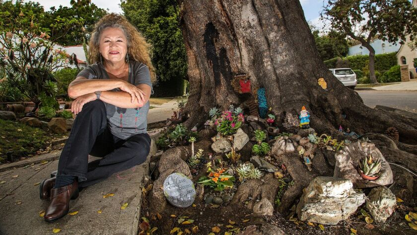 Rita Tateel created a whimsical fairy and gnome garden on the tree in front of her home.