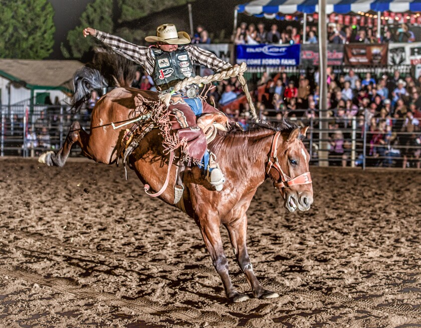 A photo of Poway Rodeo
