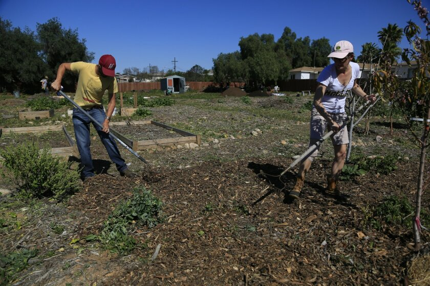 Ocean View Growing Grounds, a community garden in Mountain View