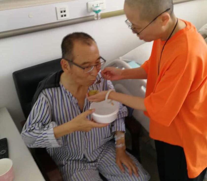 Liu Xiaobo, Liu Xia