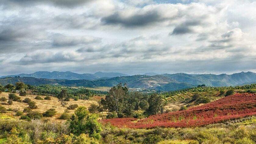 Lilac Hills Ranch