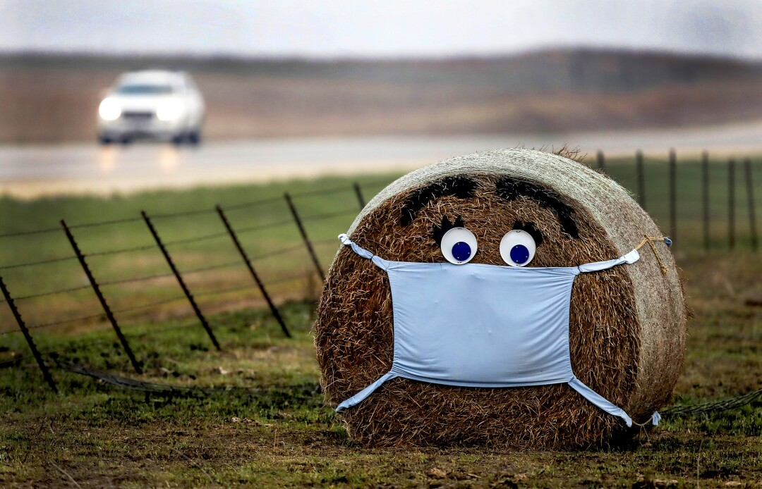 UNITED STATES: A hay bale along the edge of a cattle pasture near Florence, Kansas, is adorned with a surgical mask amid the coronavirus pandemic.