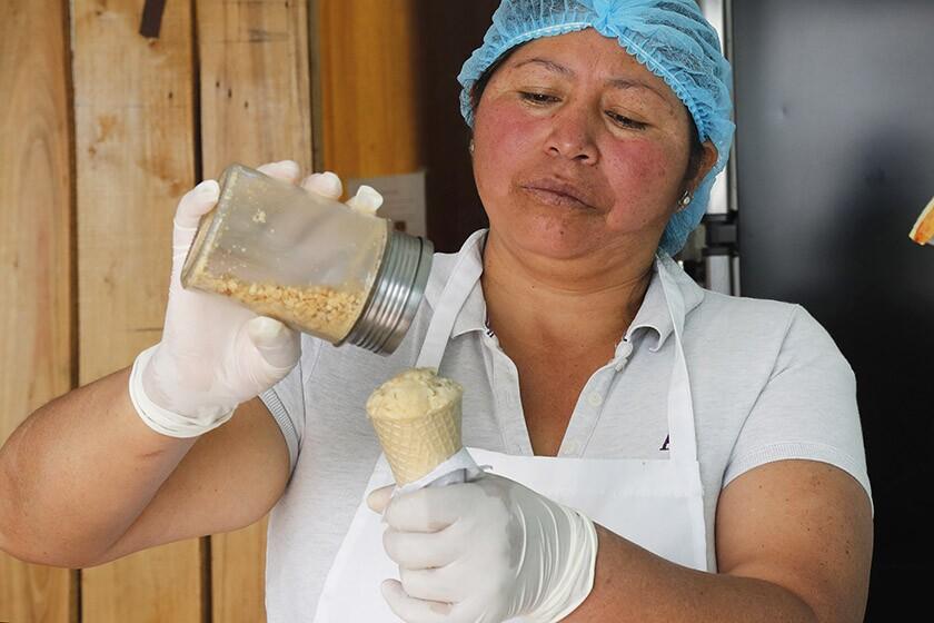 Ecuador guinea pig ice cream