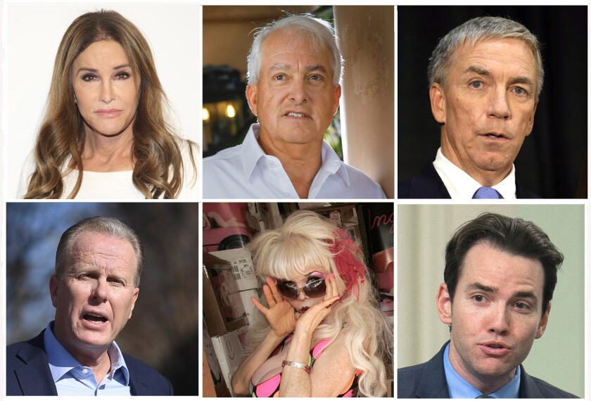 Candidates running to replace Gov. Gavin Newsom in the recall election.