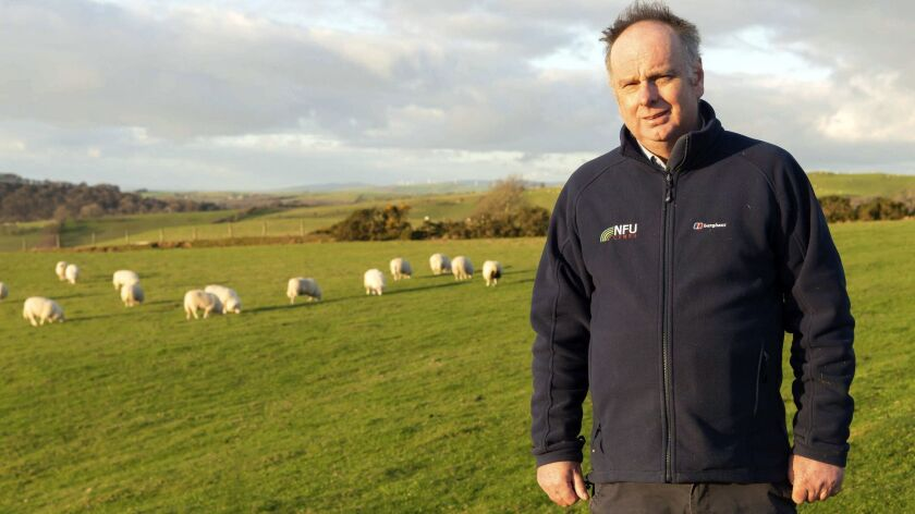 Farmer Wyn Evans, 55, on his farm, in Ceredigion, western Wales, on Jan. 28, 2019. Evans is worried that the 200-acre plot, which has been in the family for 500 years, may no longer be tenable as a Brexit deal with the European Union stalls.