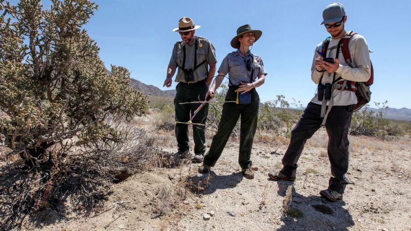 Wildlife ecologist Michael Vamstad, left, and biologists Kristen Lalumiere and Jeff Rangitsch stand