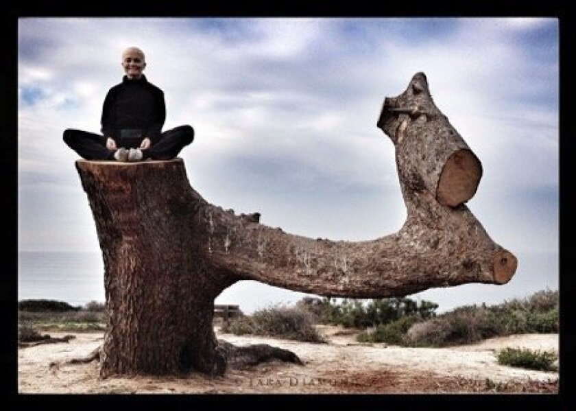 Tara Diamond sitting atop the Torrey pine.