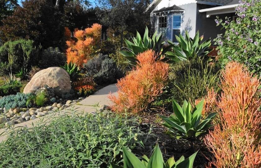Mar Vista garden stop