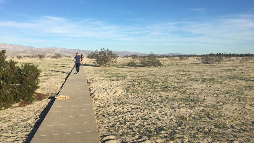 """A wooden footpath leads to Phillip K. Smith III's """"The Circle of Land Sky."""""""