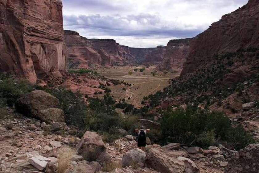 Canyon del Muerto, part of Canyon de Chelly National Monument, New Mexico.