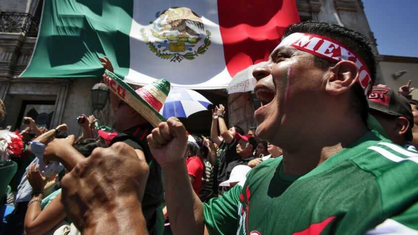 Fans shows their support for the Mexican soccer team during a 2014 World Cup watch party.