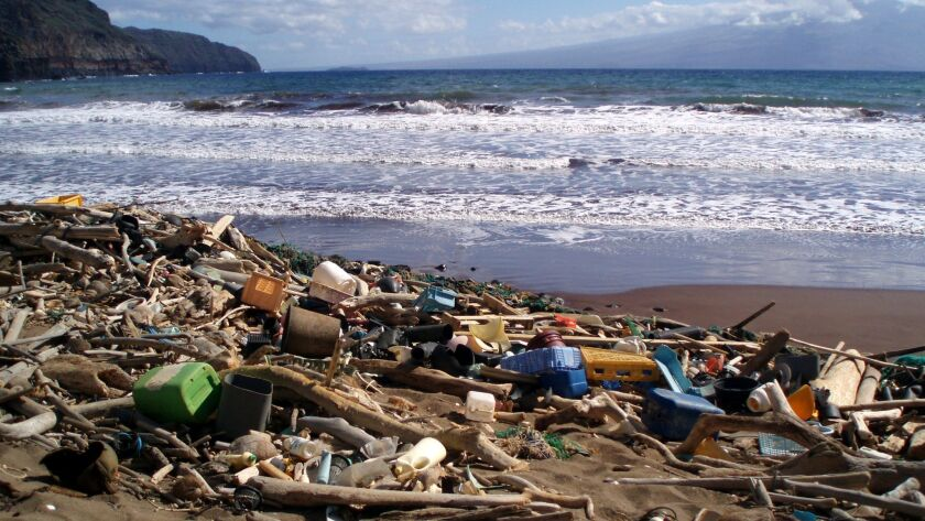 The beach at Kanapou Bay collects debris from throughout the Pacific Ocean. The Hawaii Department of