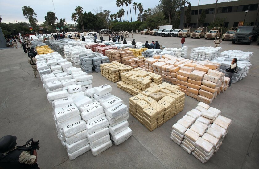 The seized marijuana weighed about as much as a 15 adult male African elephants or a Boeing 757 at maximum takeoff weight. It's more than enough for every San Diego County resident to have one ounce, the legal limit if Proposition 19 passes in November.