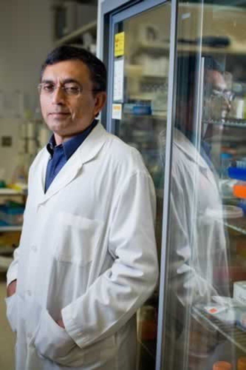 UC San Diego Distinguished Professor of Cellular and Molecular Medicine, Dr. Ajit Varki, poses in the lab at UCSD. Courtesy