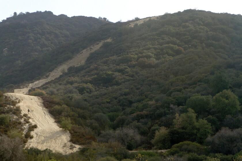 La Tuna Canyon