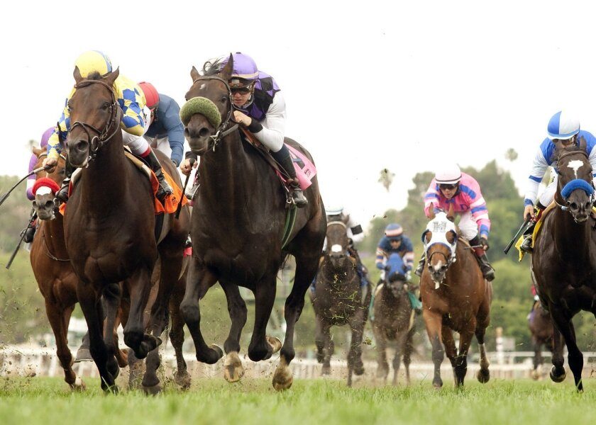 In a photo provided by Benoit Photo, Neveradoubt and jockey Flavien Prat, second from left, outleg Temple Keys, left, with Drayden Van Dyke, to win the $200,000 Snow Chief Stakes horse race, Saturday, May 23, 2015, at Santa Anita in Arcadia, Calif. (Benoit Photo via AP)