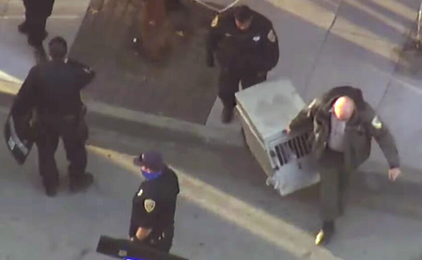 San Francisco police and animal control officers carry away a young mountain lion