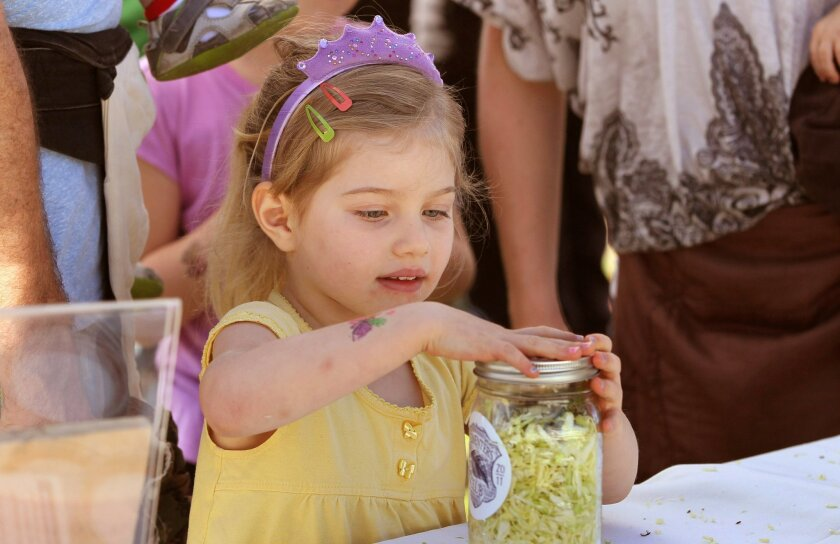"4 year old Ziva Murphy seals her jar of cabbage to make ""do it yourself"" sauerkraut at the San Diego Fermentation Festival."