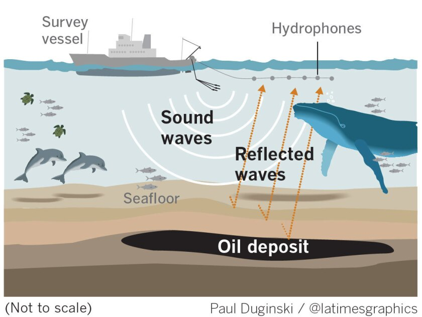 la-me-g-marine-mammal-oil-drilling-web
