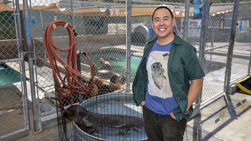 Pacific Marine Mammal Center CEO Peter Chang.