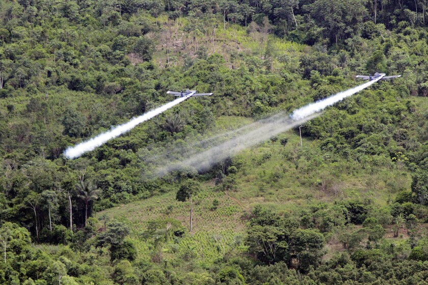 Two planes are seen fumigating coca fields in San Miguel, Colombia, in this December 2006 file photo.